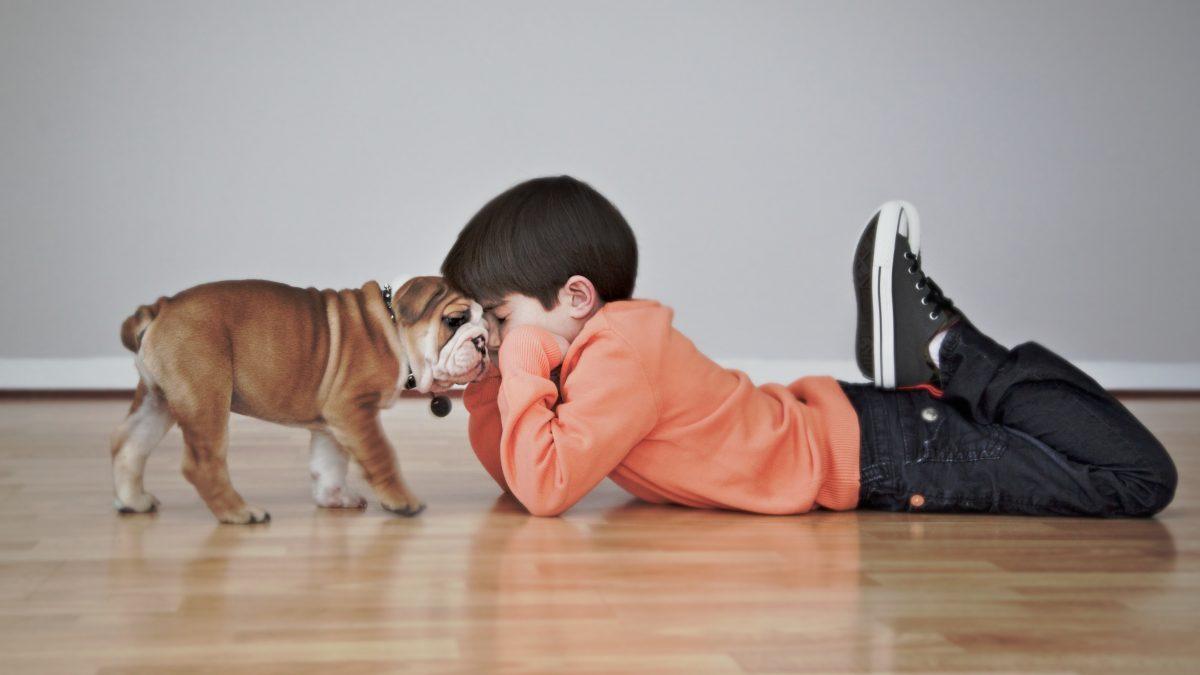pet_photography_buffalo_ny_pictures_photos_portrait_children_kids